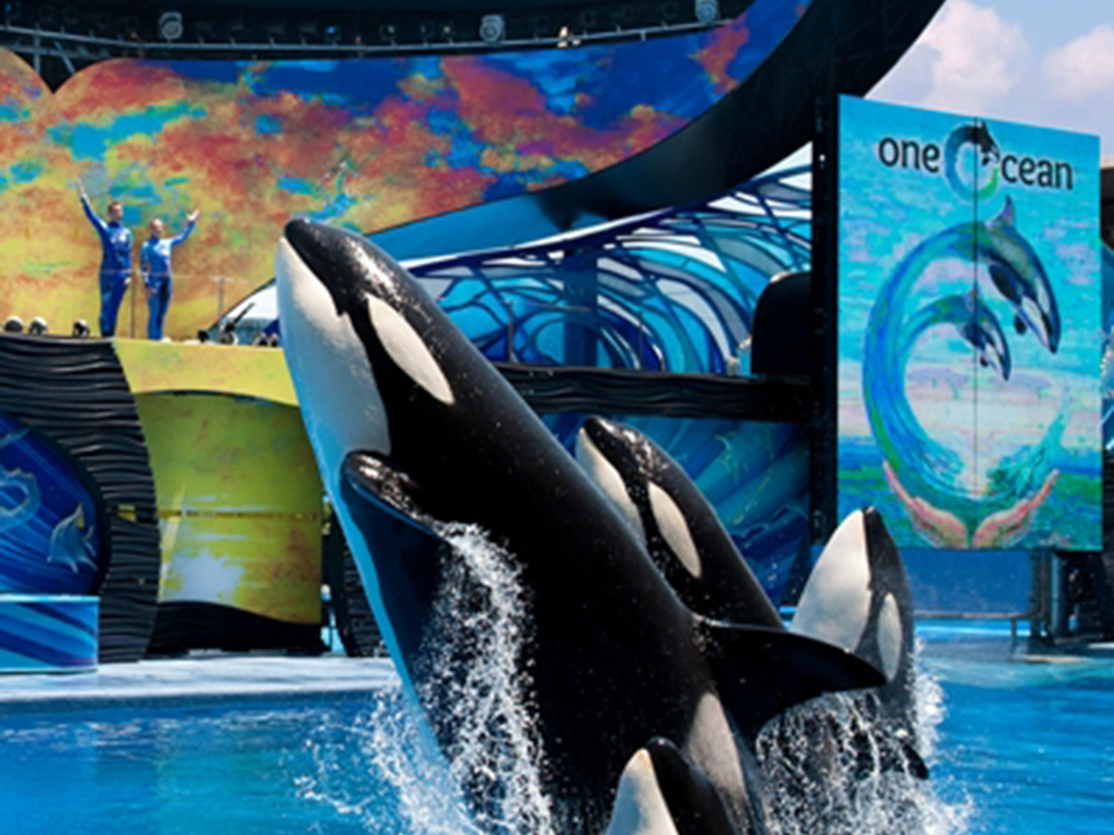 SeaWorld San Diego is only a short drive away from our hotel.
