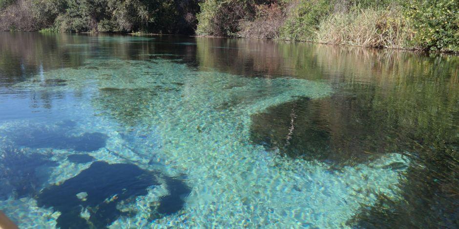 Weeki Wachee Springs Are Great For Kayaking Just 3miles N On Us19