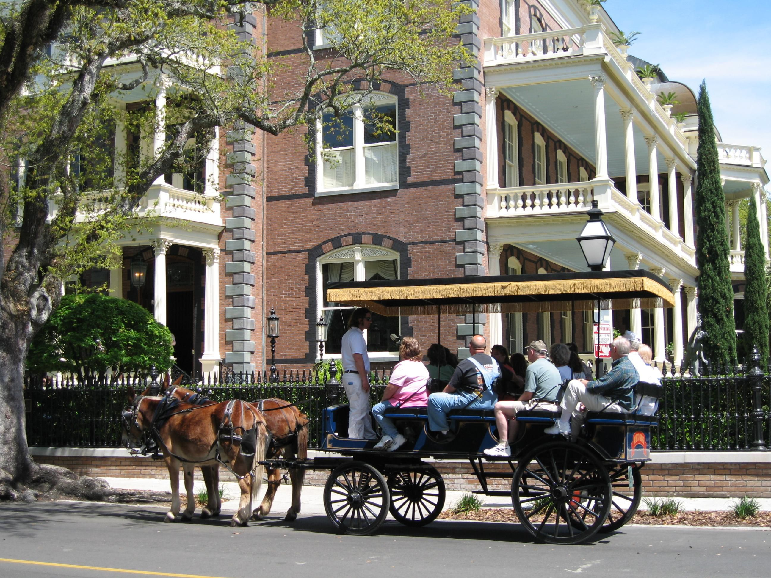 Carriage Tours of Historic Charleston