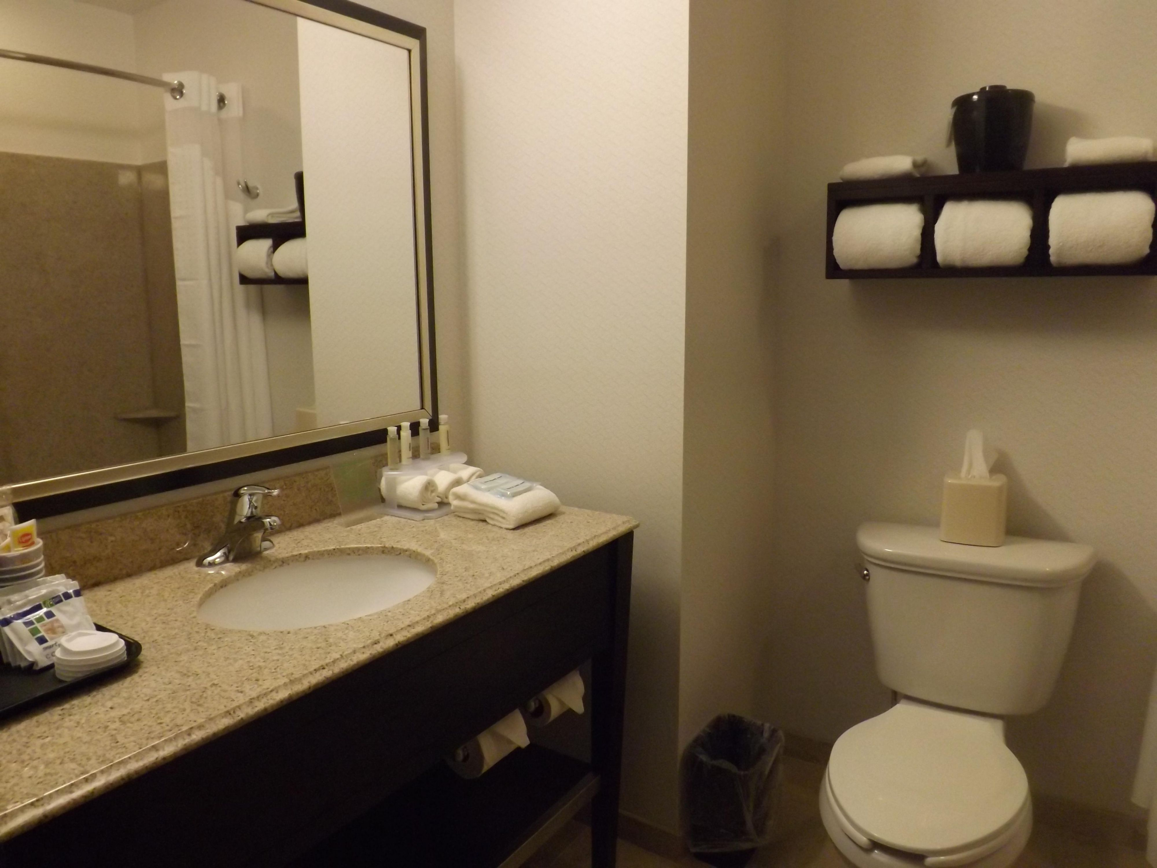 Holiday Inn Express Waterfront Mall Guest Bathroom