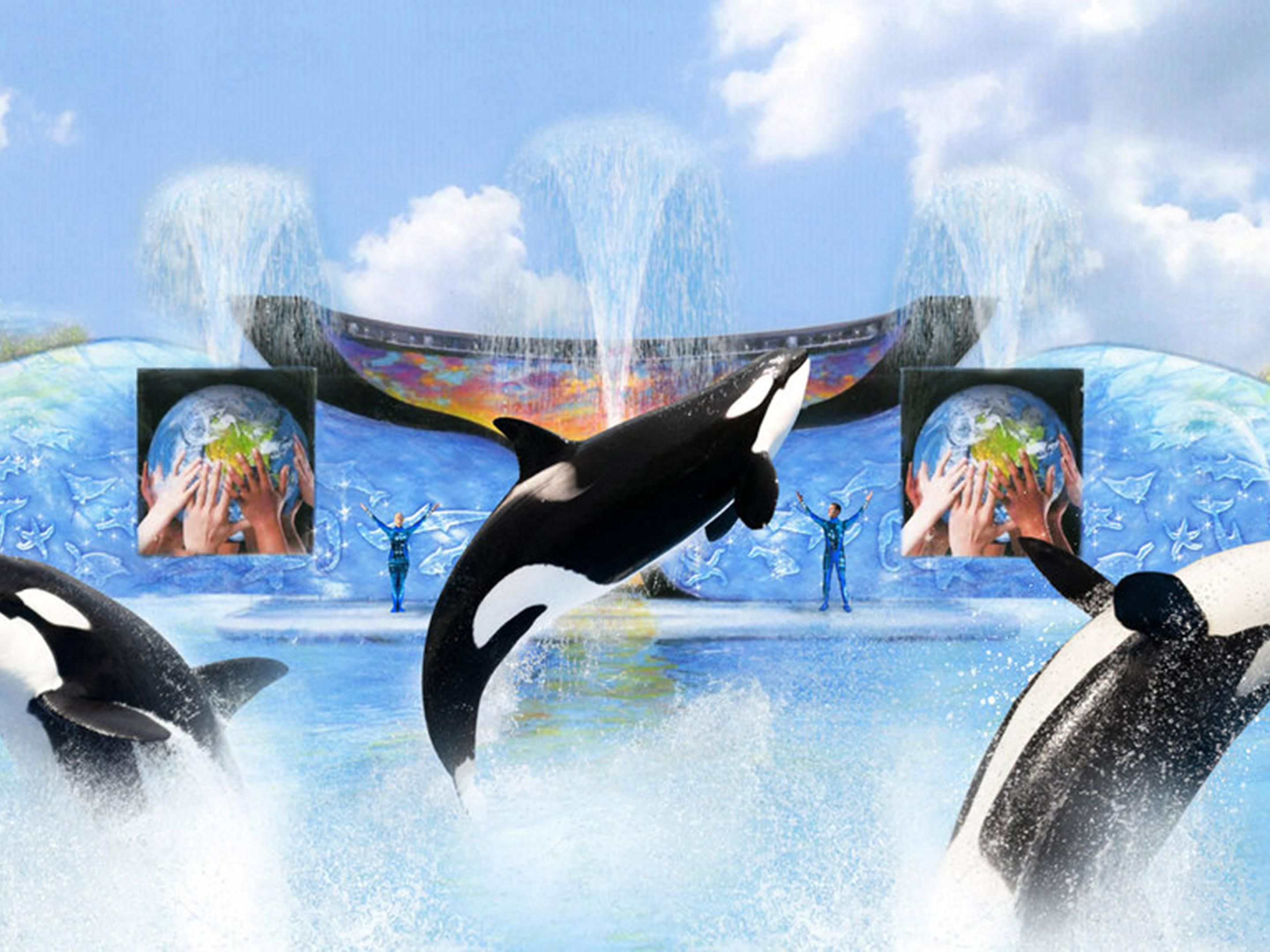 Have a whale of a good time at SeaWorld San Diego.