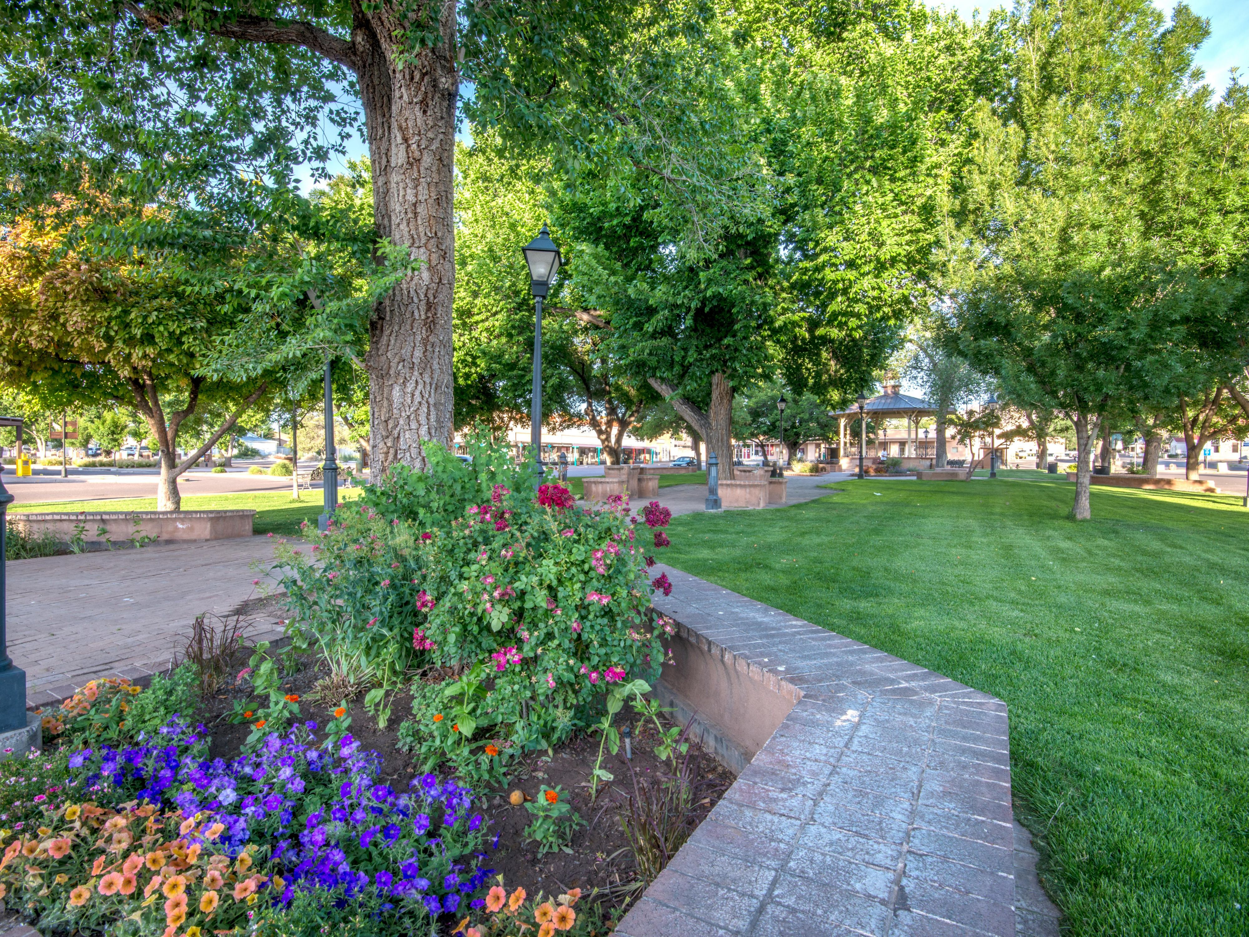 Our beautiful Socorro Plaza park!