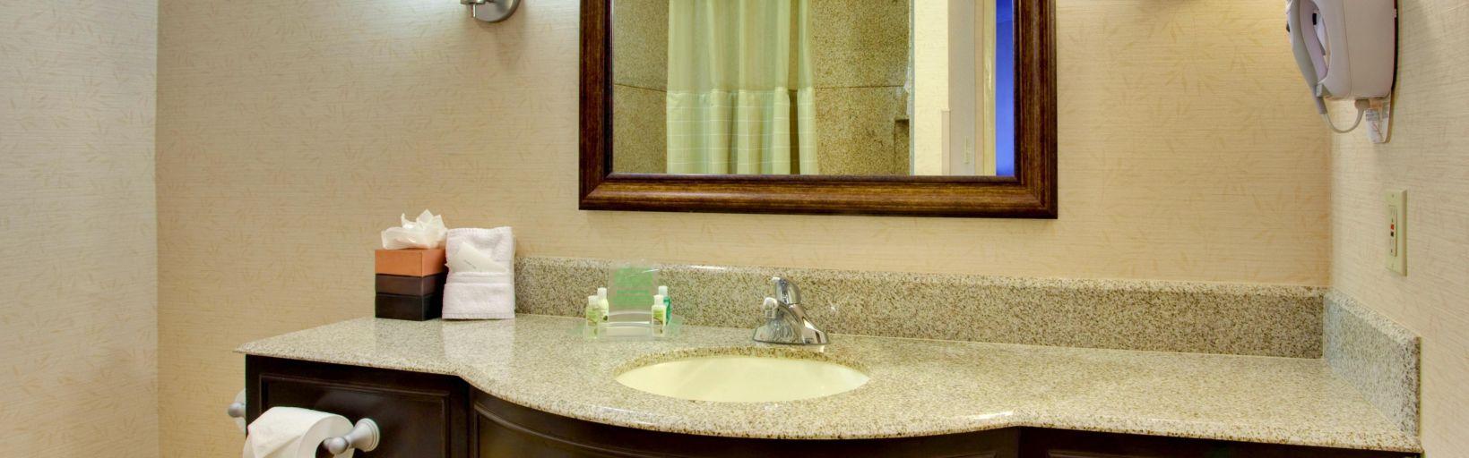 Holiday inn san diego la mesa hotel by ihg guest bathroom solutioingenieria Image collections