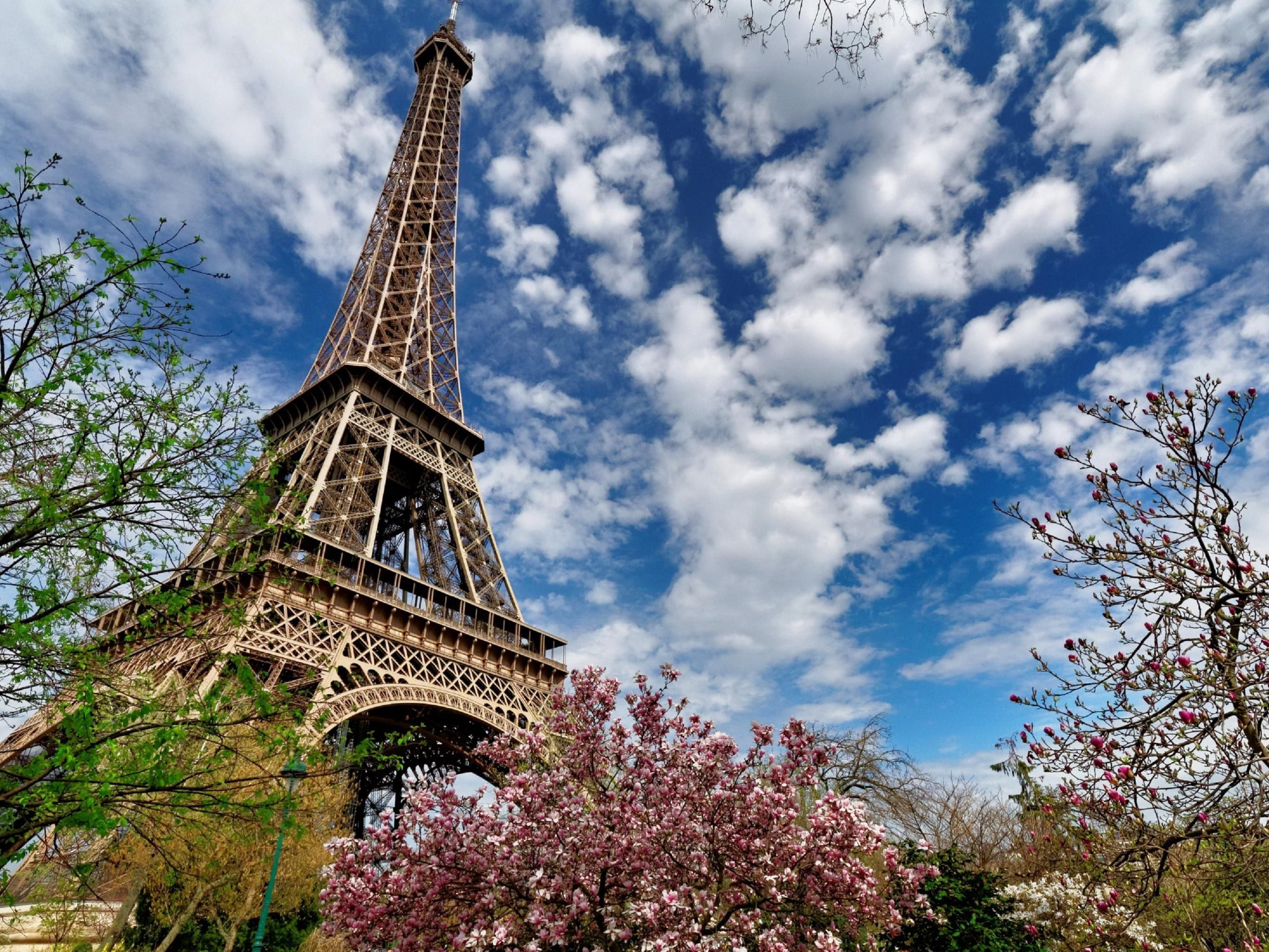 The famous 'Eiffel Tower'