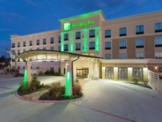 Holiday Inn Texarkana Arkansas Conv Ctr in New Boston, Texas