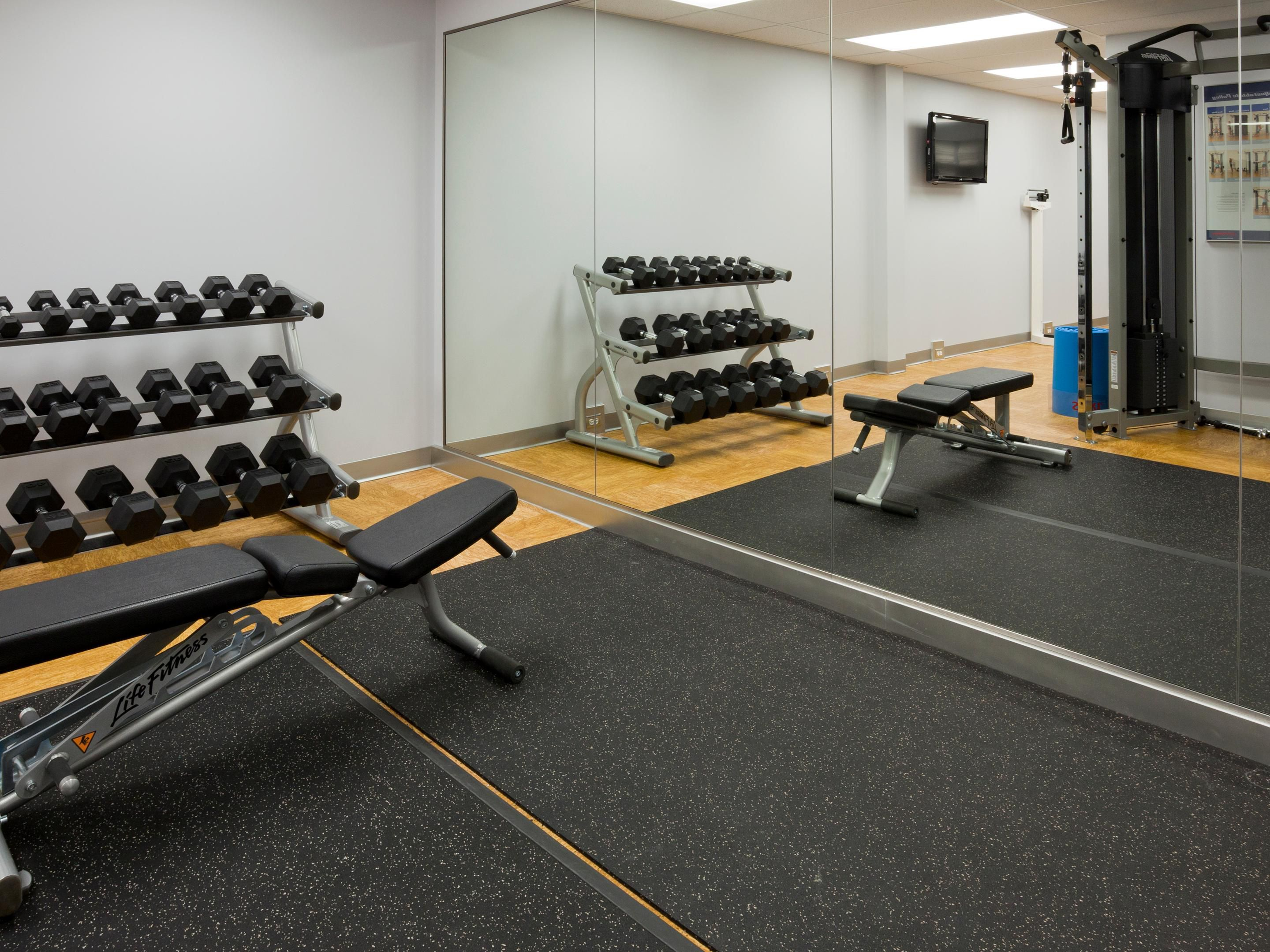 Free Hand Weights in our State of the Art Fitness Center